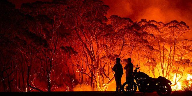 دود جنگلسوزی استرالیا دامن همه جهان را خواهد گرفت