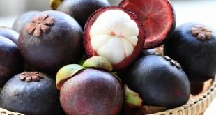 منگوستین لطیف ترین میوه خوشمزه استوایی