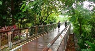 معرفی ۱۲ پارک ملی زیبا در مالزی برای گذراندن تفریحات آخر هفته ای