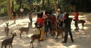 گردشگری مالزی:  پارک آهو در کوالالامپور