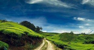 بهشت مالزی