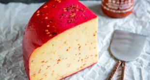 انواع پنیر؛ ۱۵ نوع پنیر خوشمزه و محبوب در دنیا