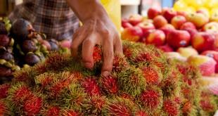 با میوه های رنگارنگ مالزی بیشتر آشنا شوید
