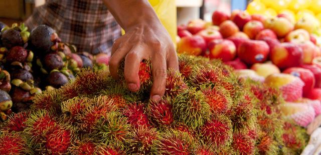 فصل میوه در مالزی