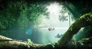 پارک ملی تامان نگارا، جنگلی ۱۳۰ میلیون ساله با انسانهای غارنشین