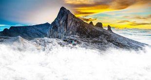 کوهی  که در مالزی راه میرود!