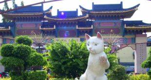 کوچینگ؛ نگین شرق آسیا